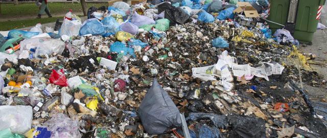 3.000 toneladas de basura en Jerez: quema de contenedores y ratas instaladas en la ciudad